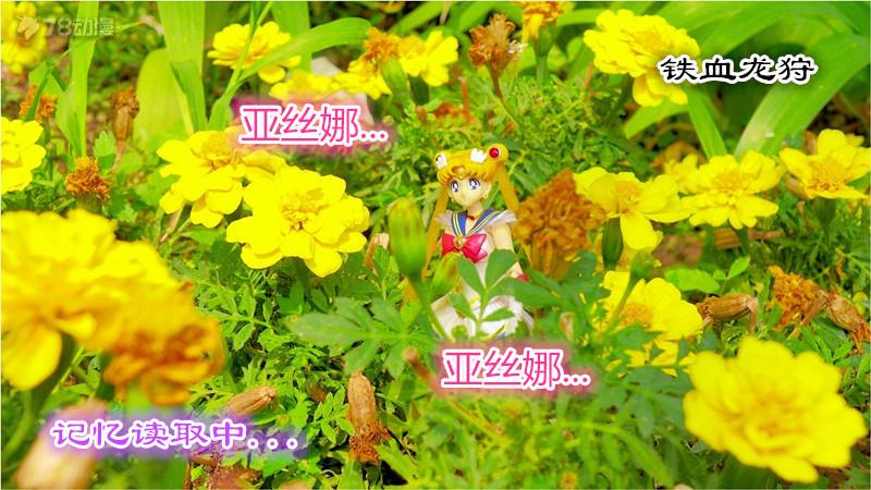 22-037_副本.jpg