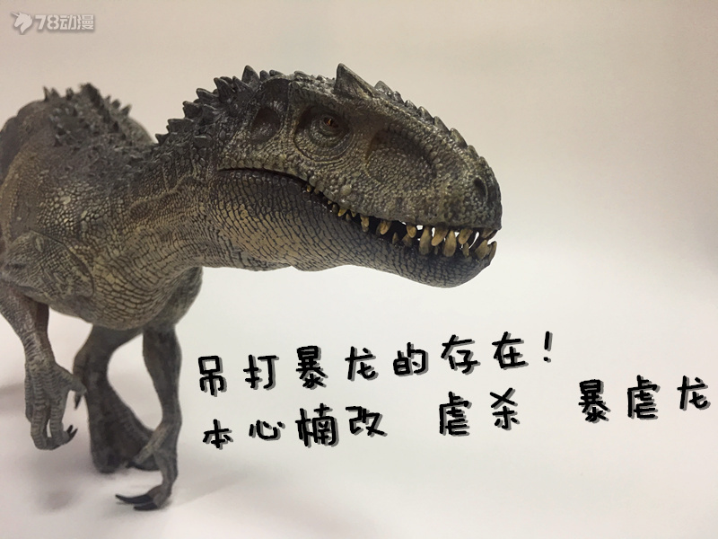 IMG_3712_副本2.jpg