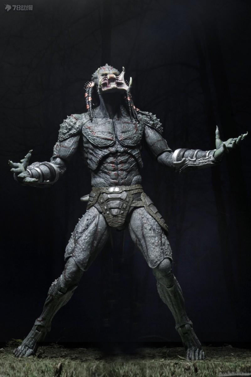 NECA-2018-Assassin-Predator-007.jpg