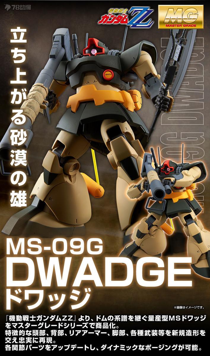 20190219_mg_dwadge_02.jpg